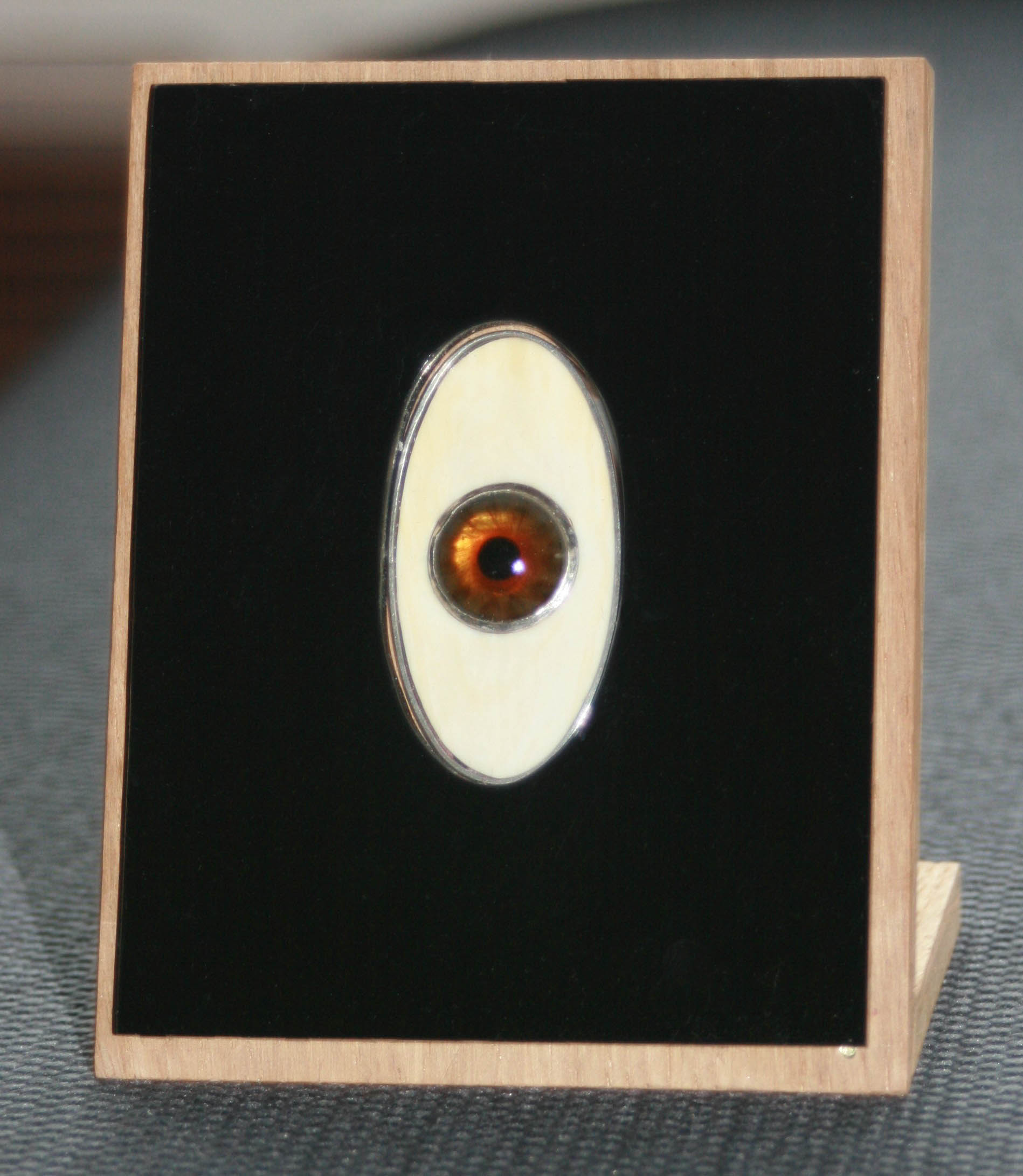 Hanger van zilver met iris van een glazen oog, ivoor, perspex en LED in een eikenhouten houder